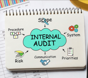What Is Certified Internal Auditor