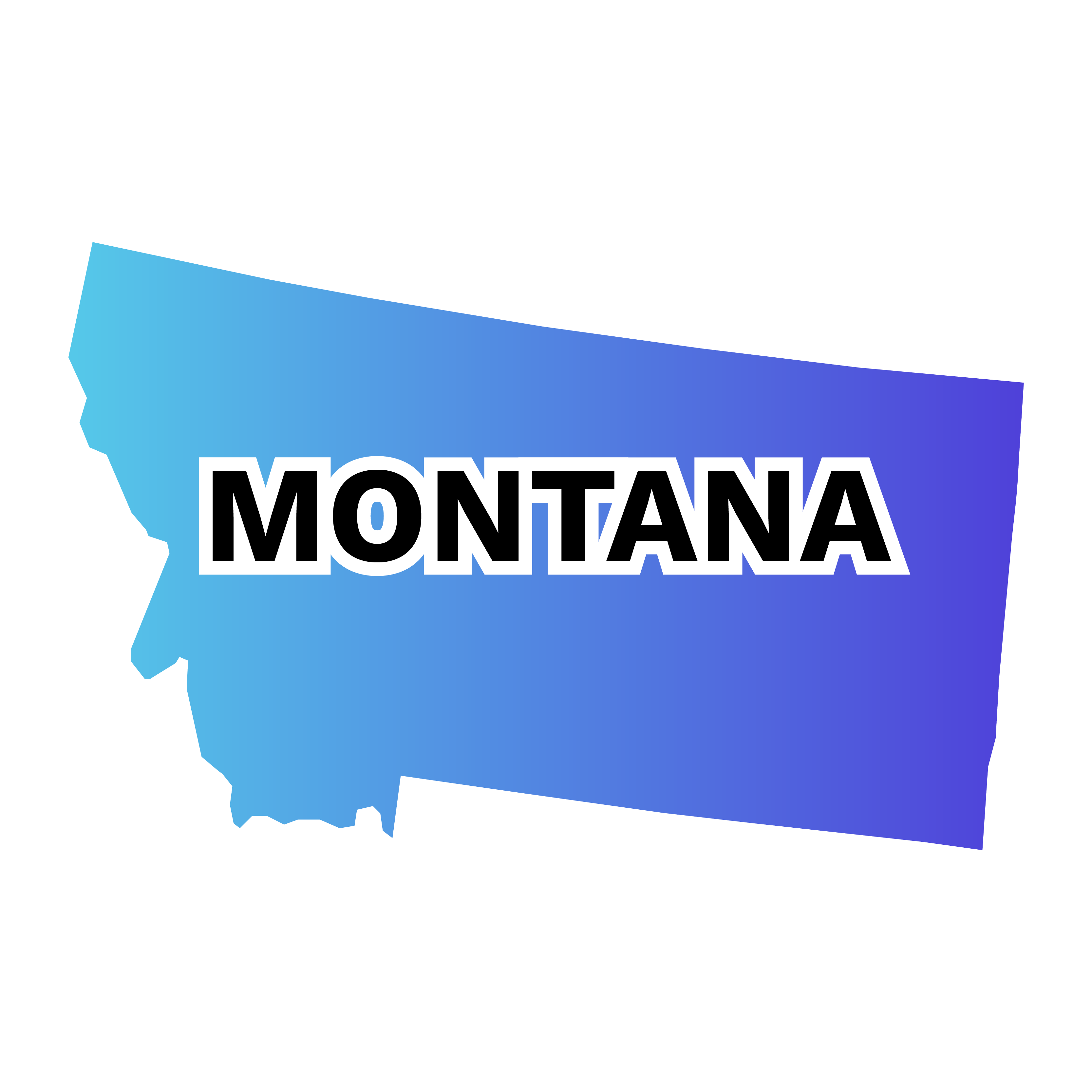 Montana CPA Exam & License Requirements